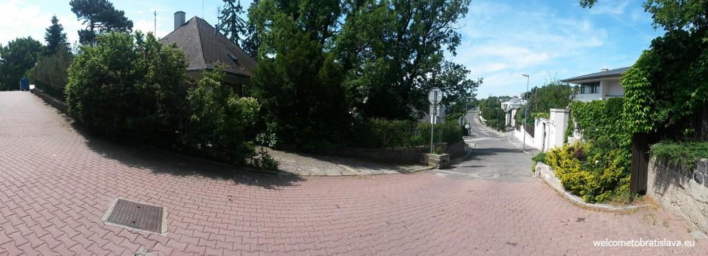 Walking towards Slavin
