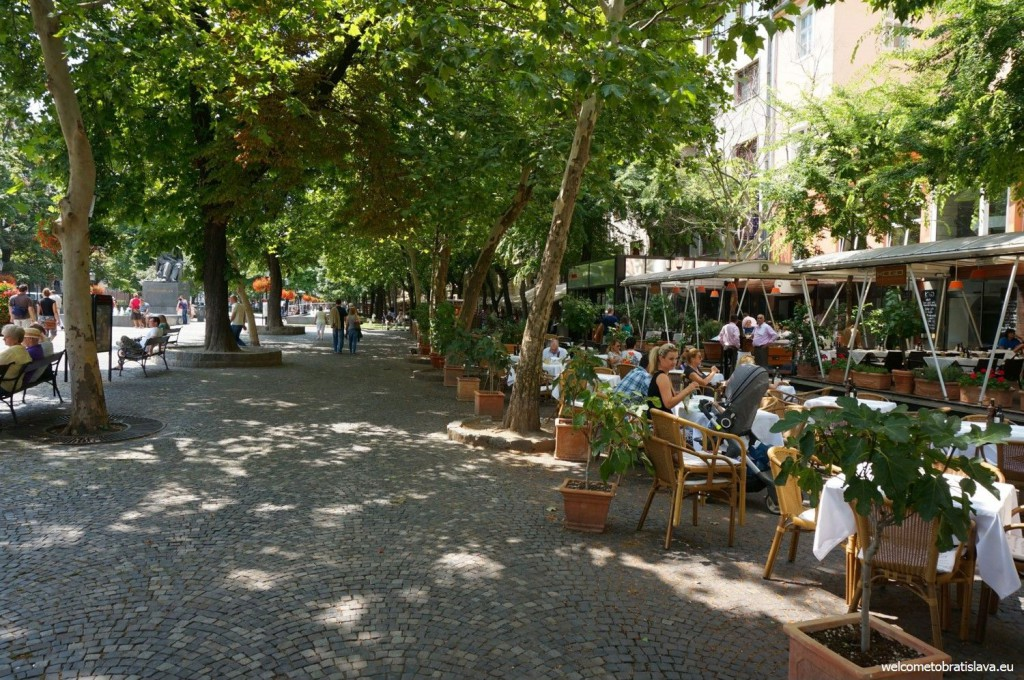 Hviezdoslav's square: Pedestrian line