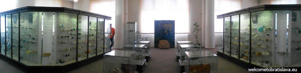 Crystals, minerals from Slovak as well as foreign localities or gemstones are also to be found here