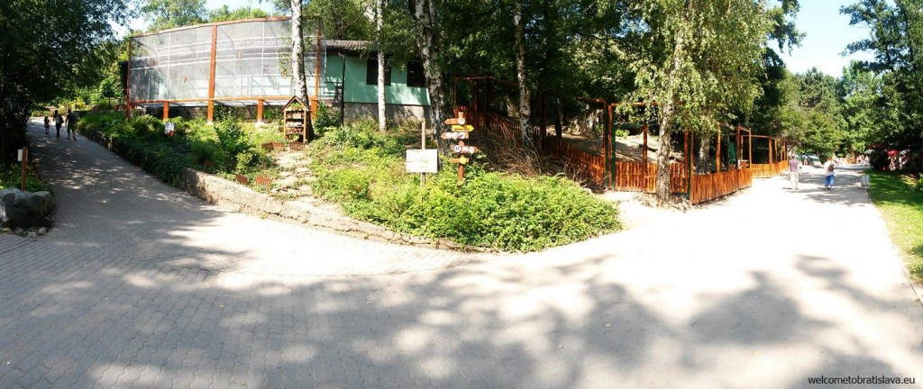 Paths in the ZOO