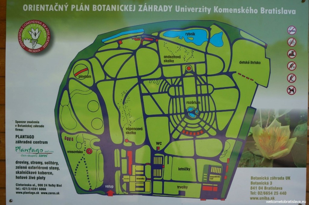 The map of the area