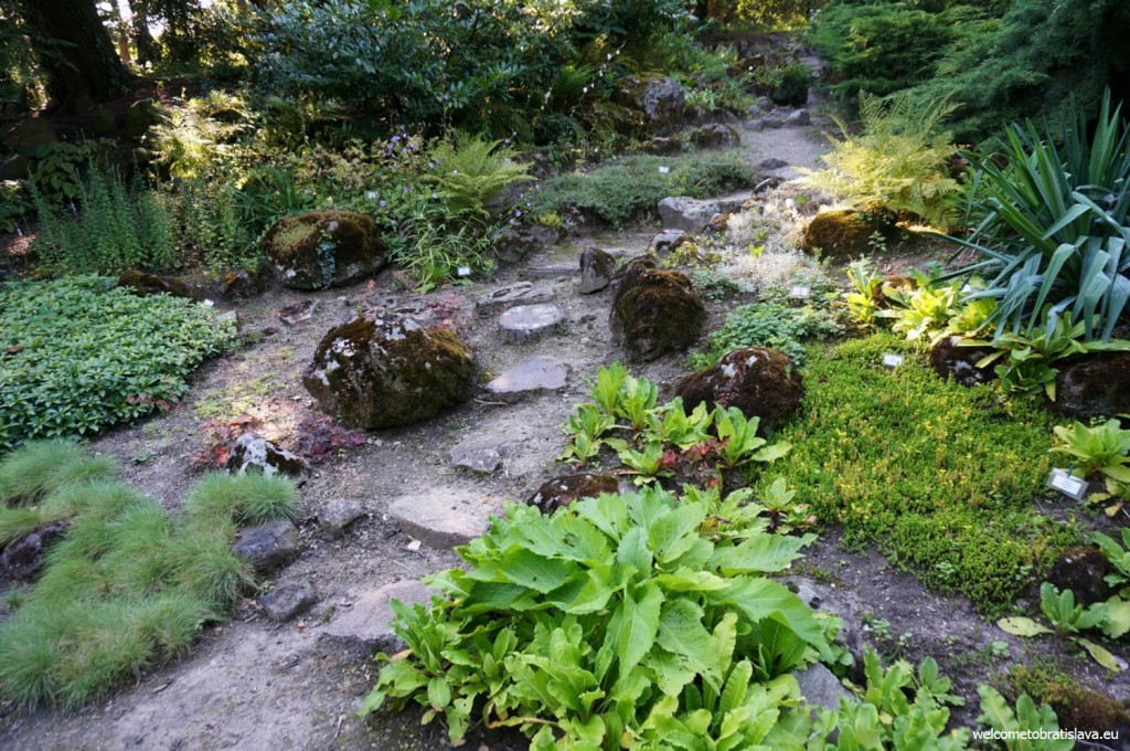 These aesthetic paths which will lead you back to the main entrance
