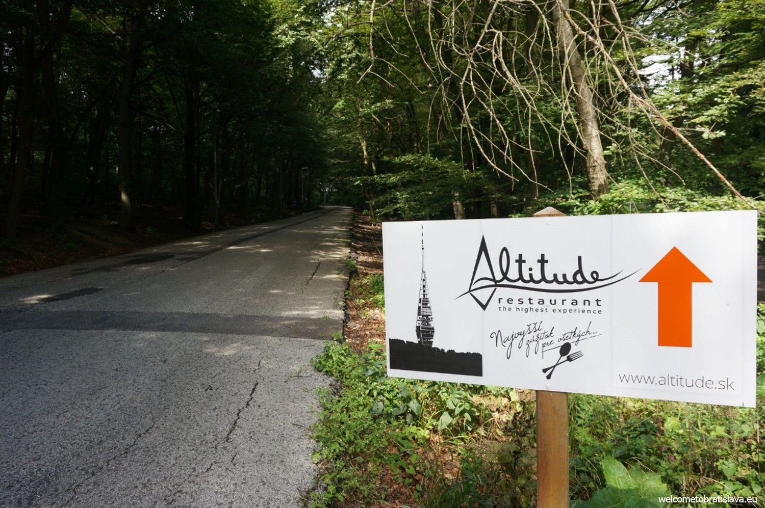 You will come to another crossroad on your way. Again, keep left, following the Altitude sign (right picture).