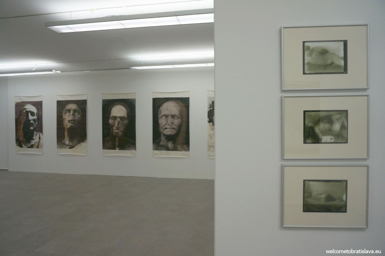 Photos from one of the exhibitions