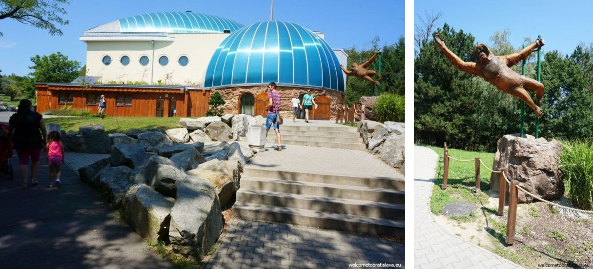 Outdoor places for kids in Bratislava - ZOO