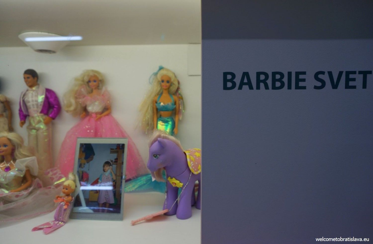 Dominika's Barbie world