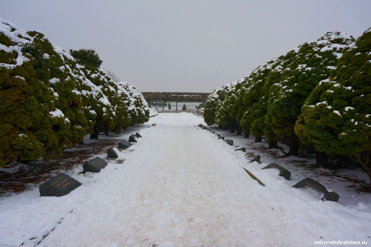 Graves covered by snow