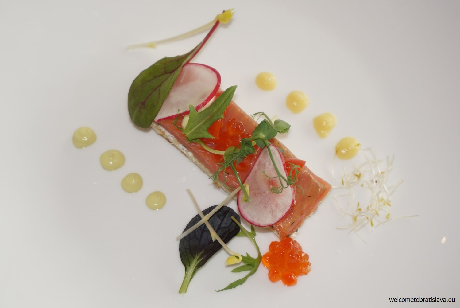 Cured salmon trout with blini, lime scented Crème Fraiche and trout caviar