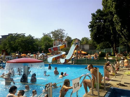 swimming pool Delfin
