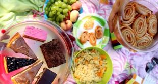 picnic in bratislava