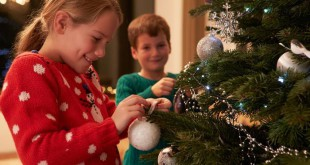decorating-christmas-tree-_monkey_business_-_fotolia_large