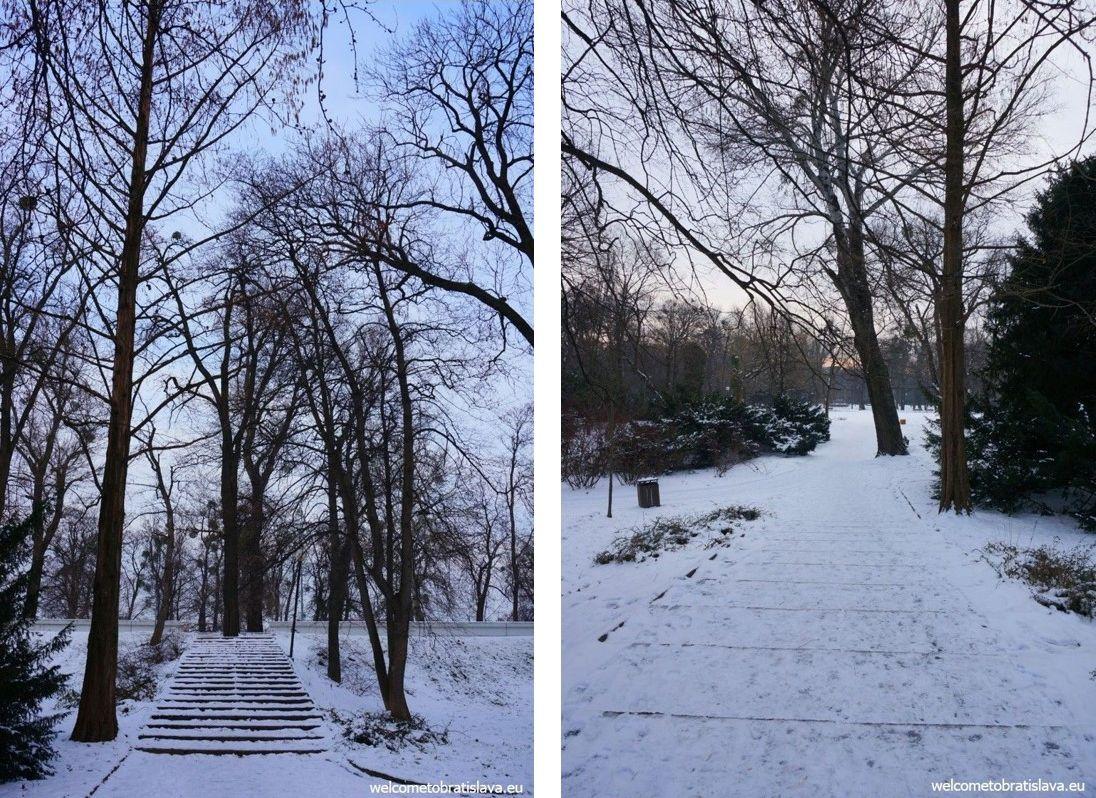 winter in bratislava snowy wonderland