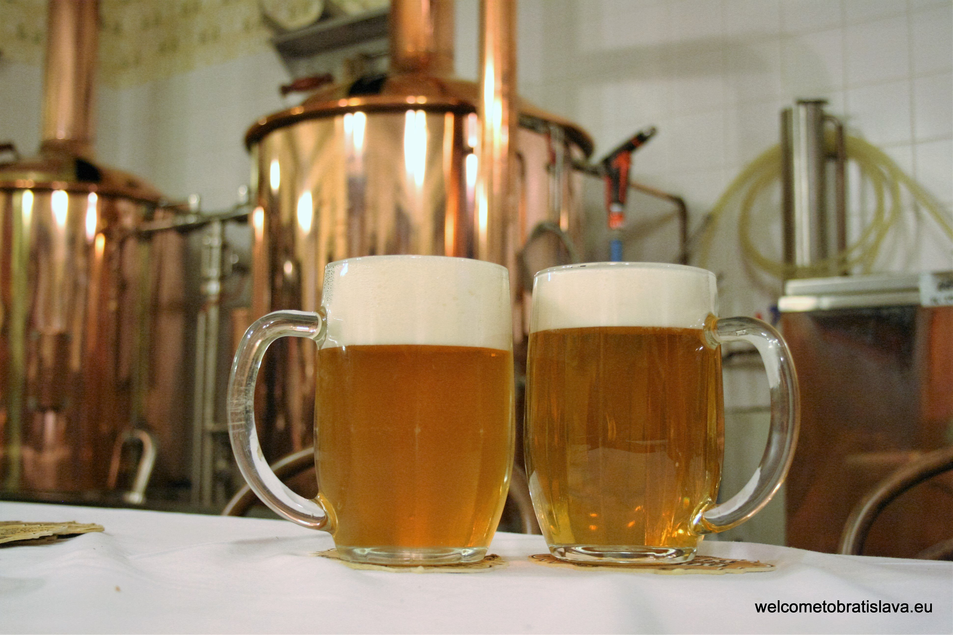 Muzejny pivovar