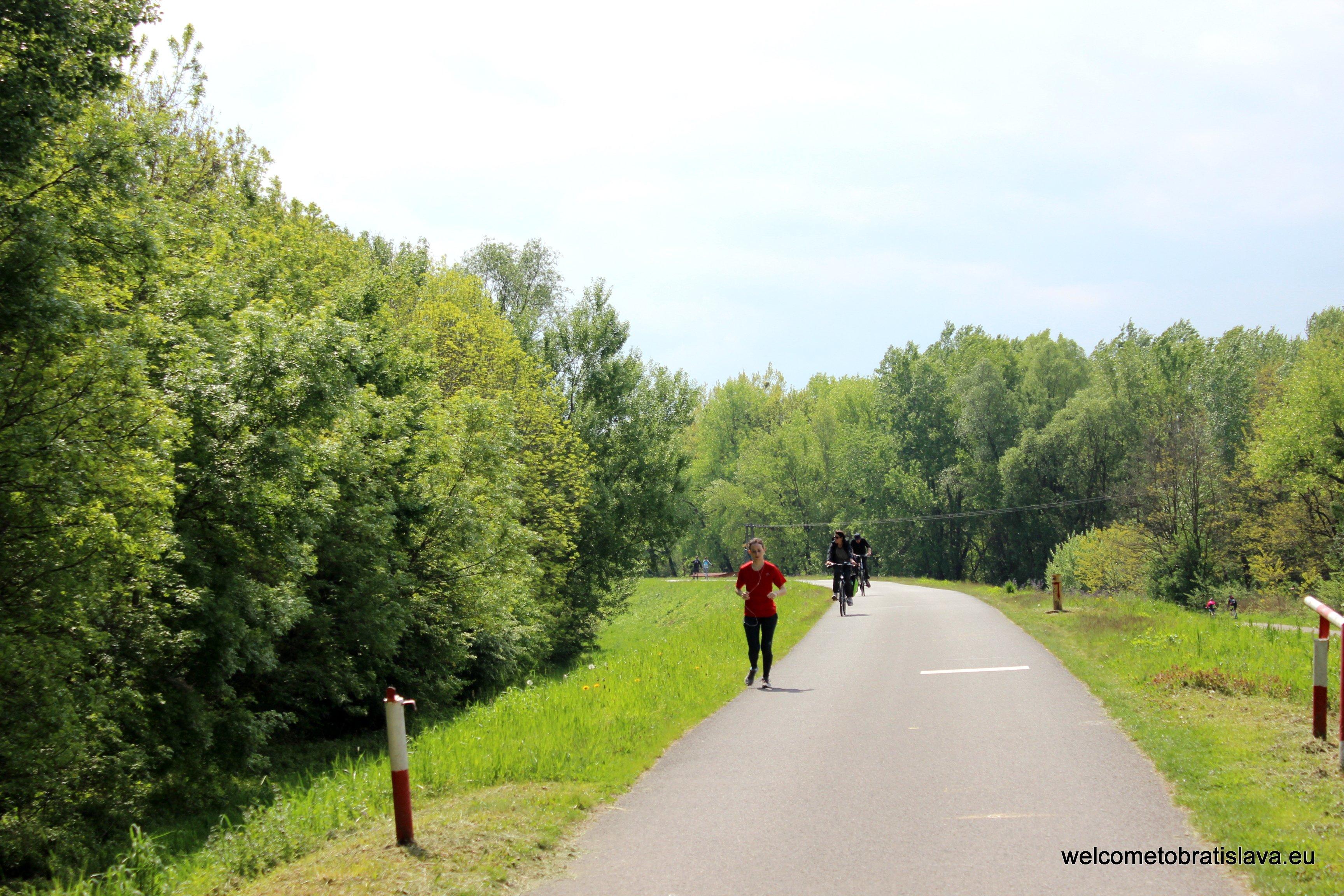 Best running spots - Petrzalka Dam