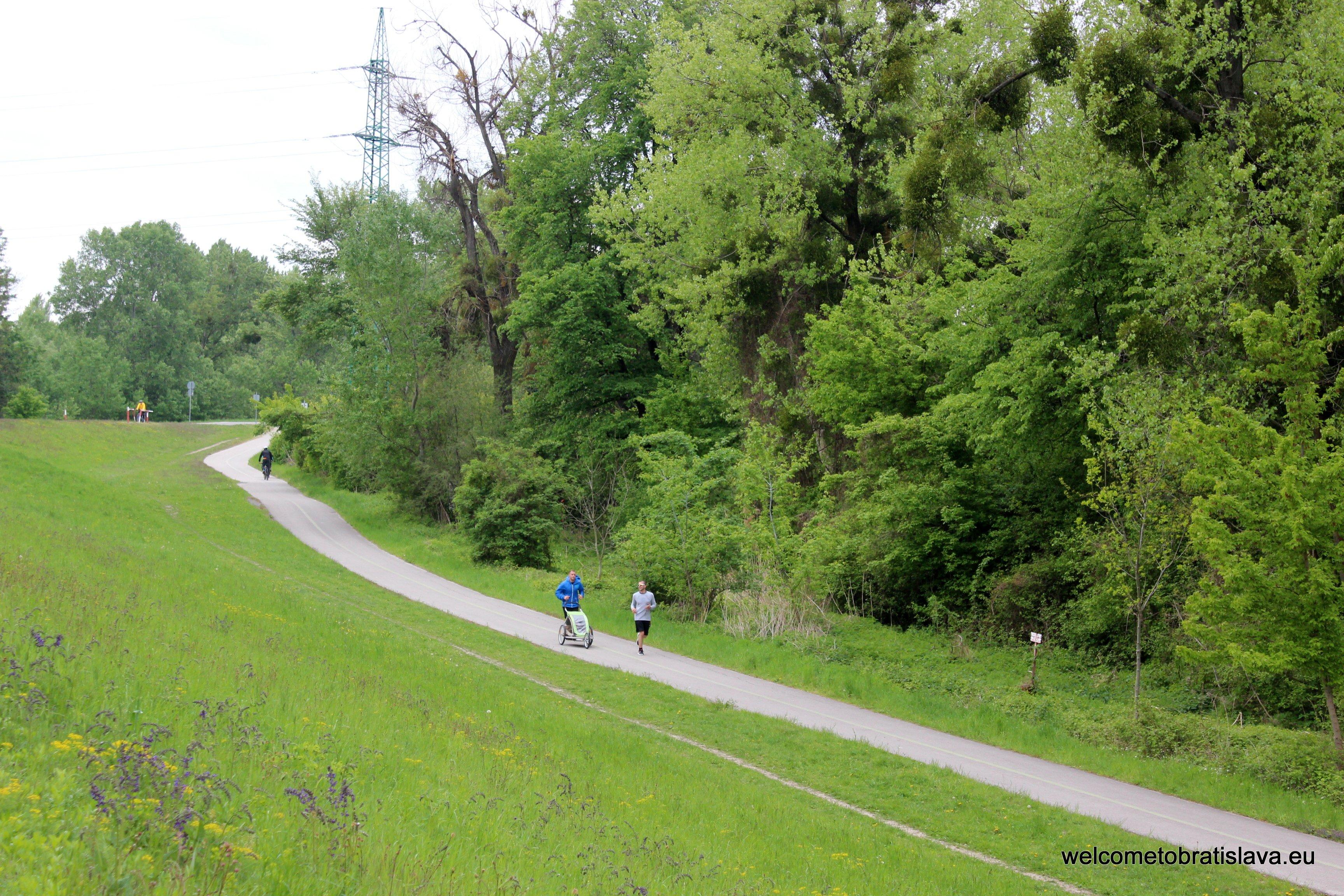 Best running spots in Bratislava - Petrzalka Dam