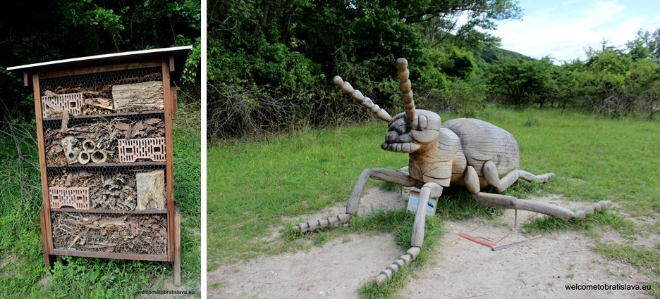 Outdoor places for kids in Bratislava - Insect hotel Devinska
