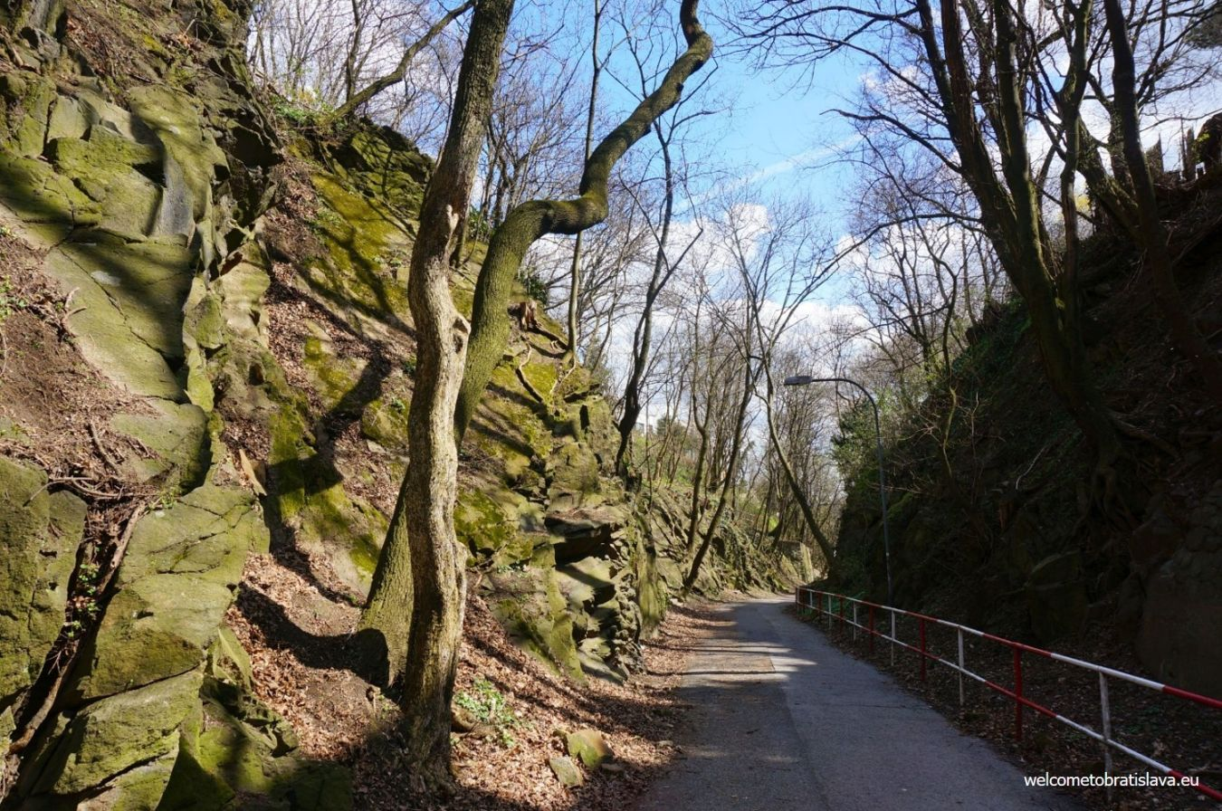 Outdoor places for kids in Bratislava -Horsky park