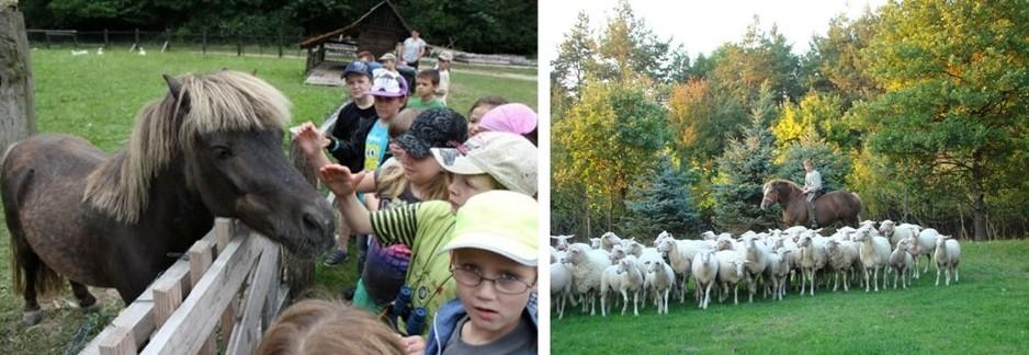 Outdoor places for kids - Biofarm Stupava