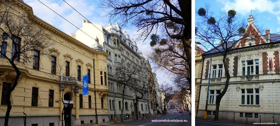 Stefanikova Street: Pisztory Palace and Tauscher's Villa