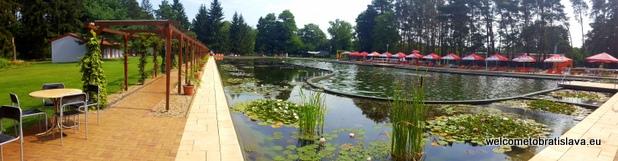 natural swimming pool Borovica