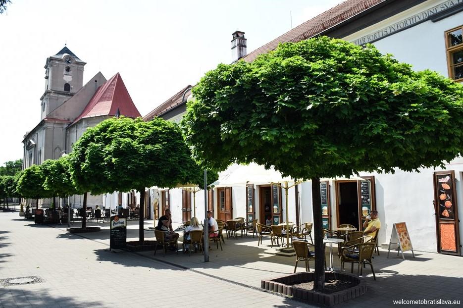 One day trip to Pezinok